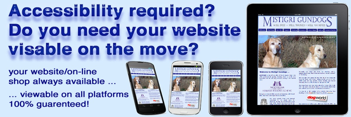 Home Page Rotate - Screen 2 - 1200x400